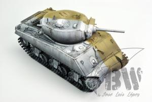 Sherman BW_YS_2